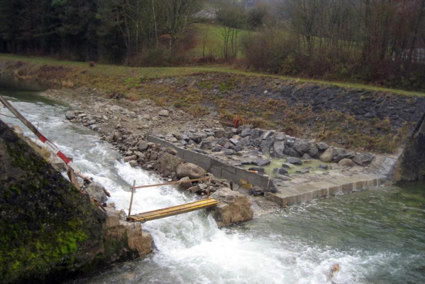 Moudon - Seuil de Valacrêt - Restauration de la migration piscicole dans la Broye en amont de Moudon